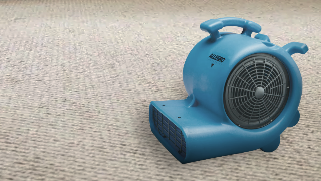Carpet Blowers